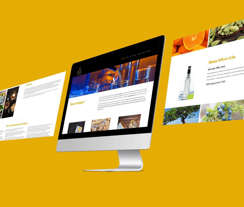 Web Design_4.jpg