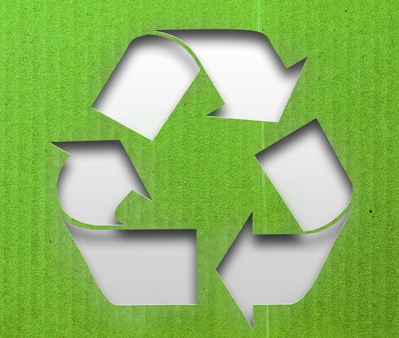 Environment_4.jpg