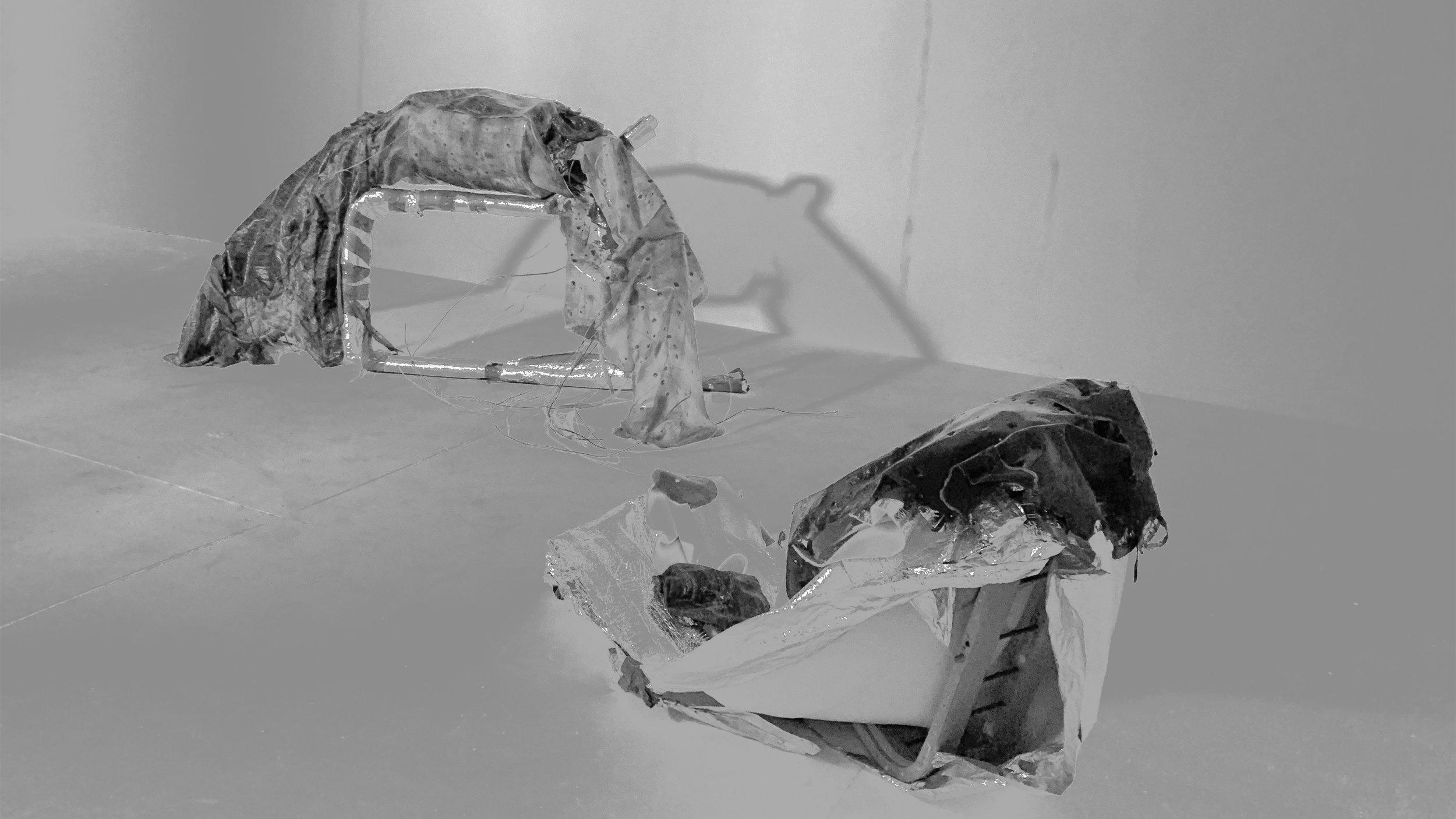 1. portia-The Flea.jpg
