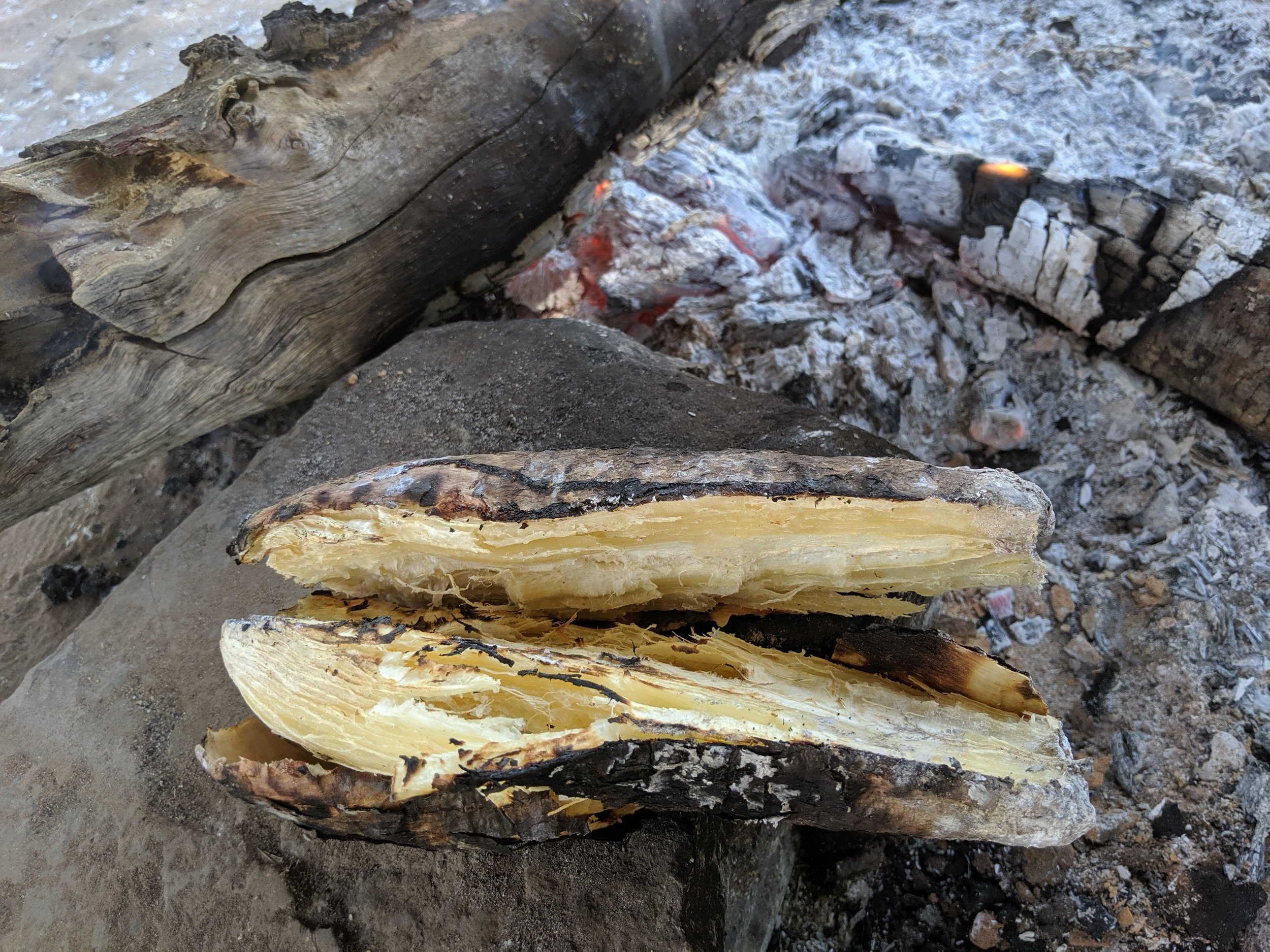 Inside of roasted cassava