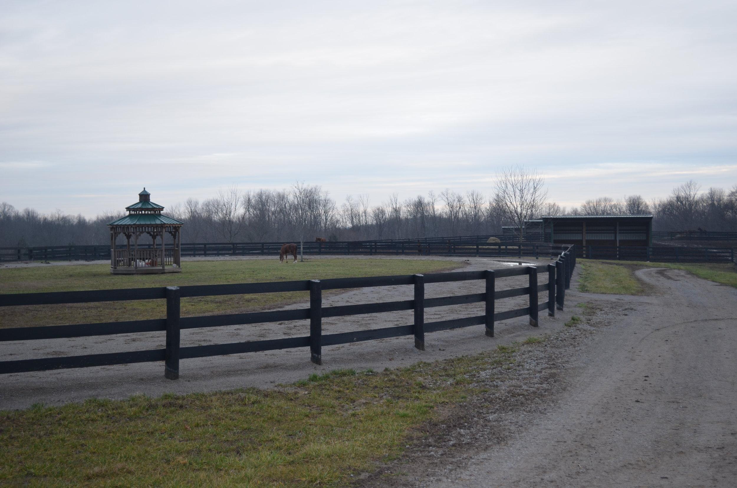Outdoor arena:pastures.JPG