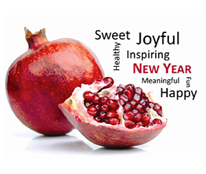 Happy New Year from Beit Ruth