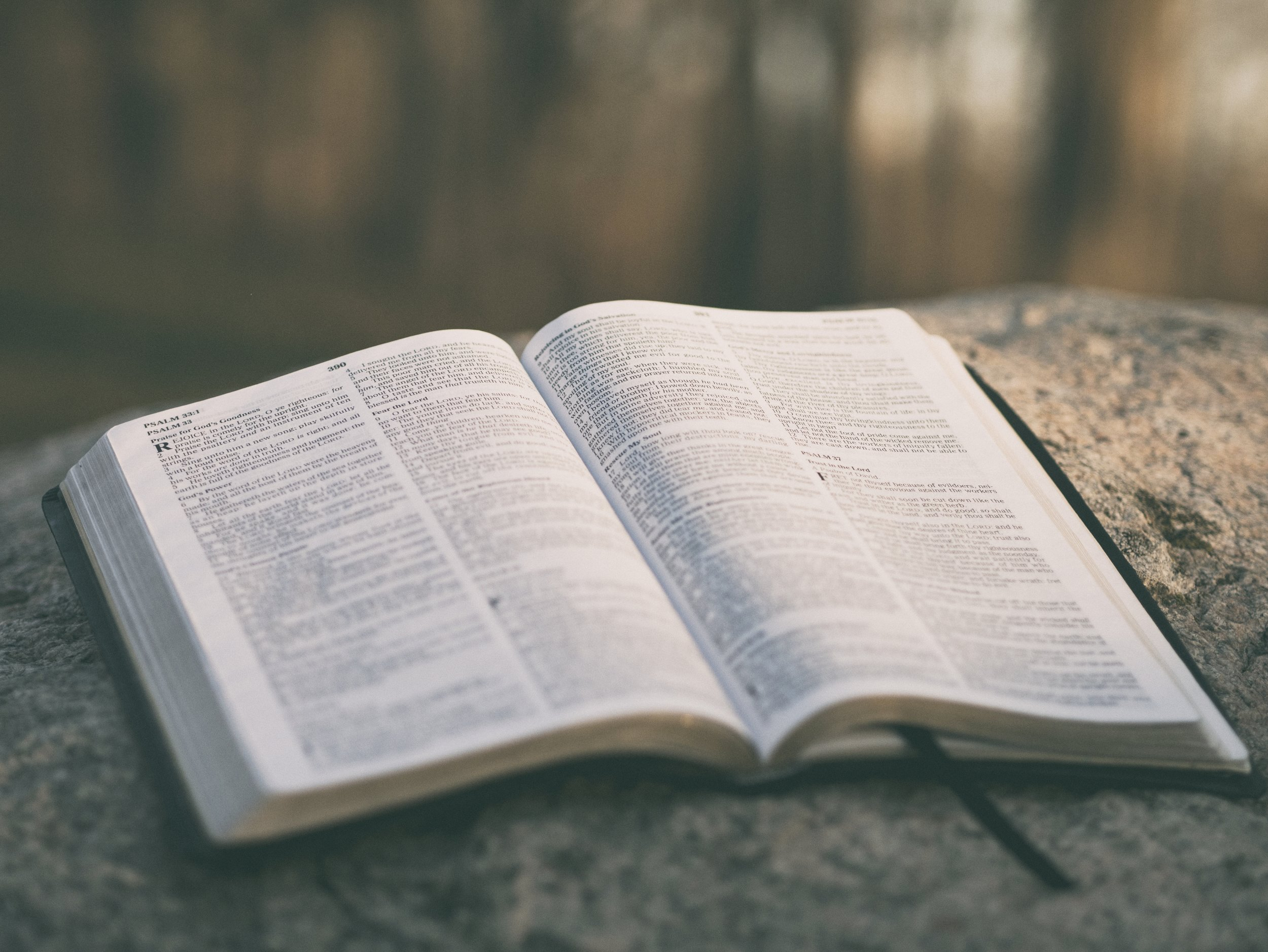 Scripture speaks. - Everything we do involves the faithful preaching and teaching of the Scriptures. We believe God intends to form us and shape us through His Word.