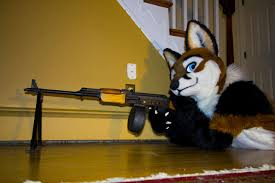 "Dustin Hobbs - Orange supremacist, gun control advocate, and furry. When asked what a website bio is he replied ""whats that?"""