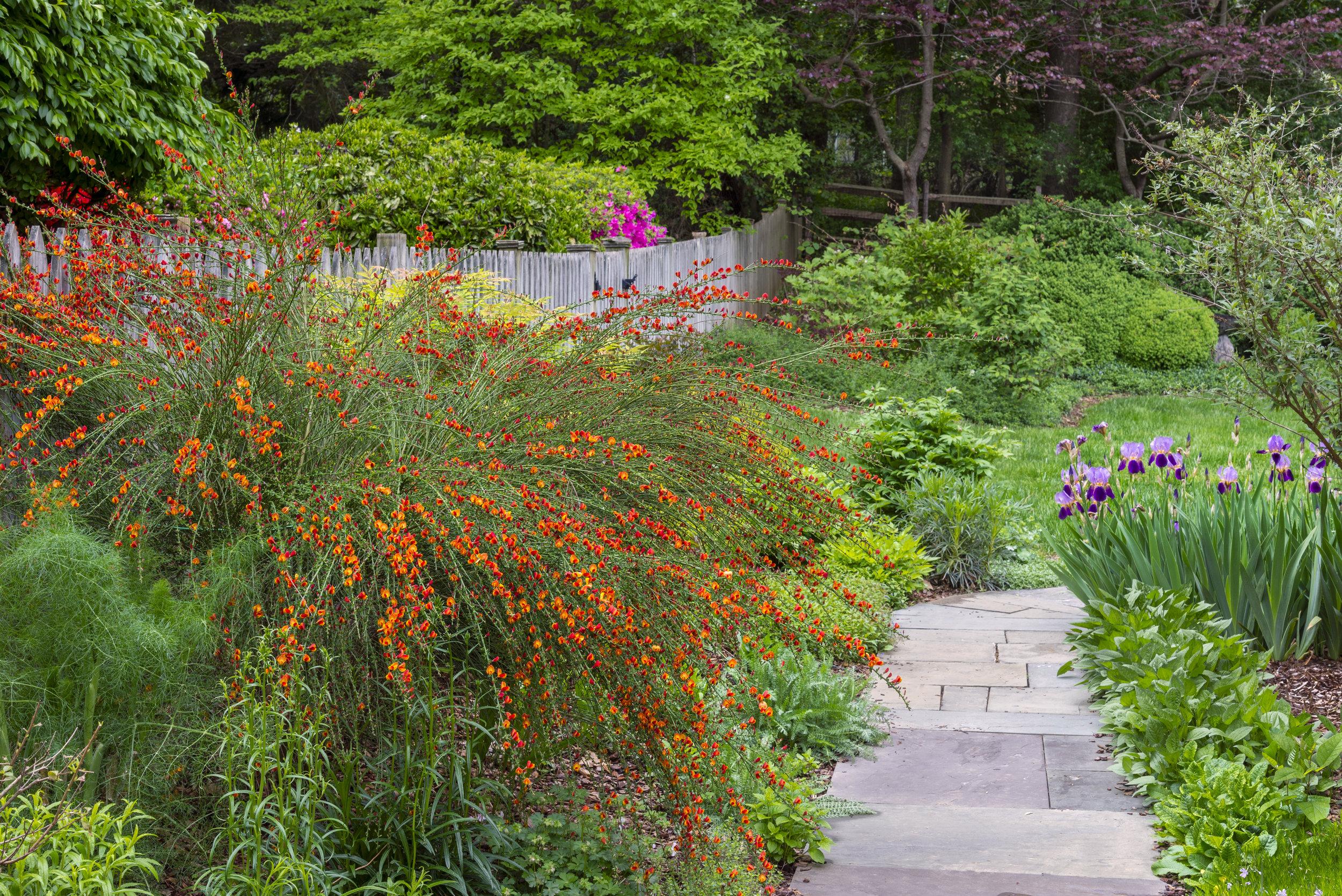 Gardening Gentle Redesign