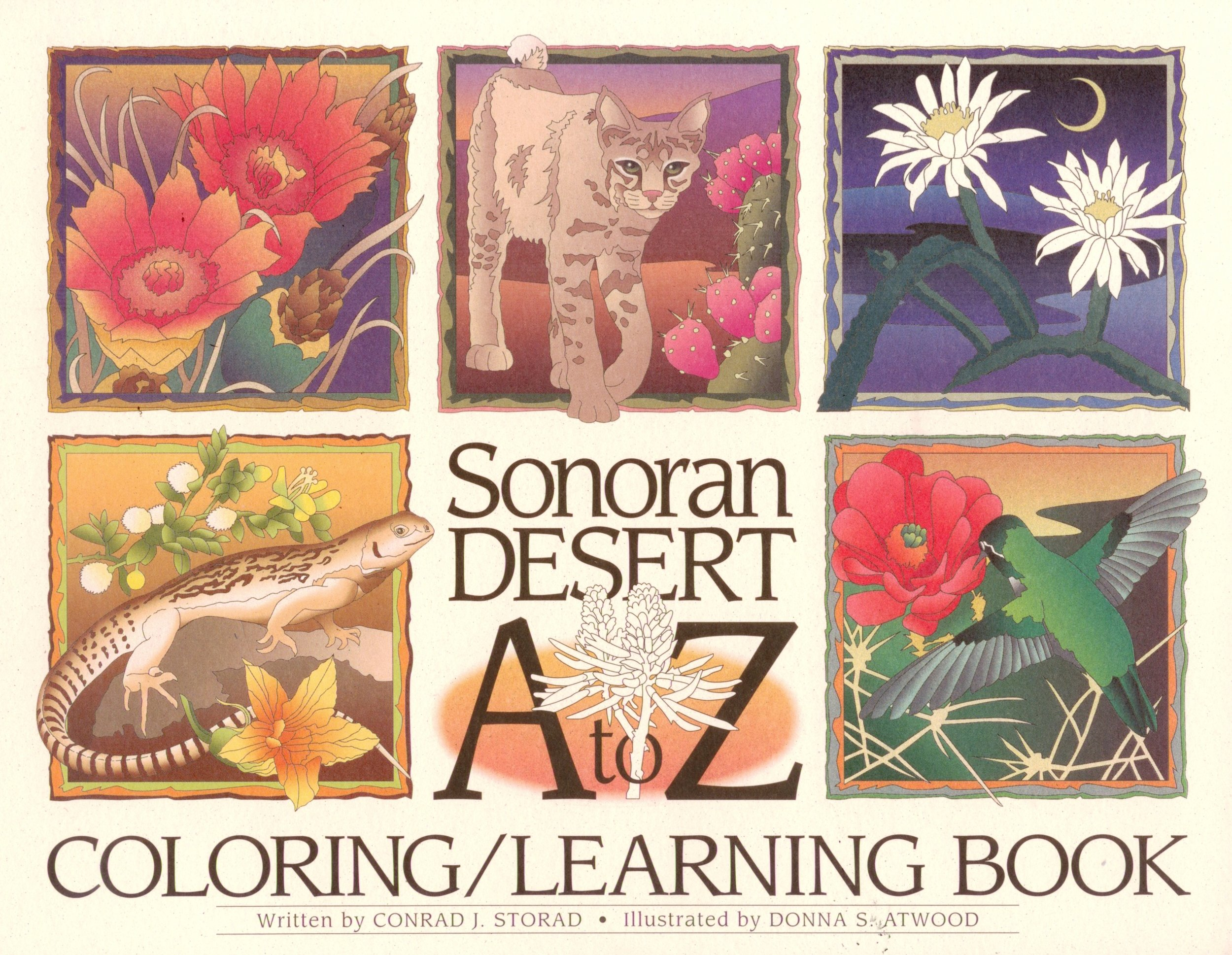 Sonoran Desert A to Z