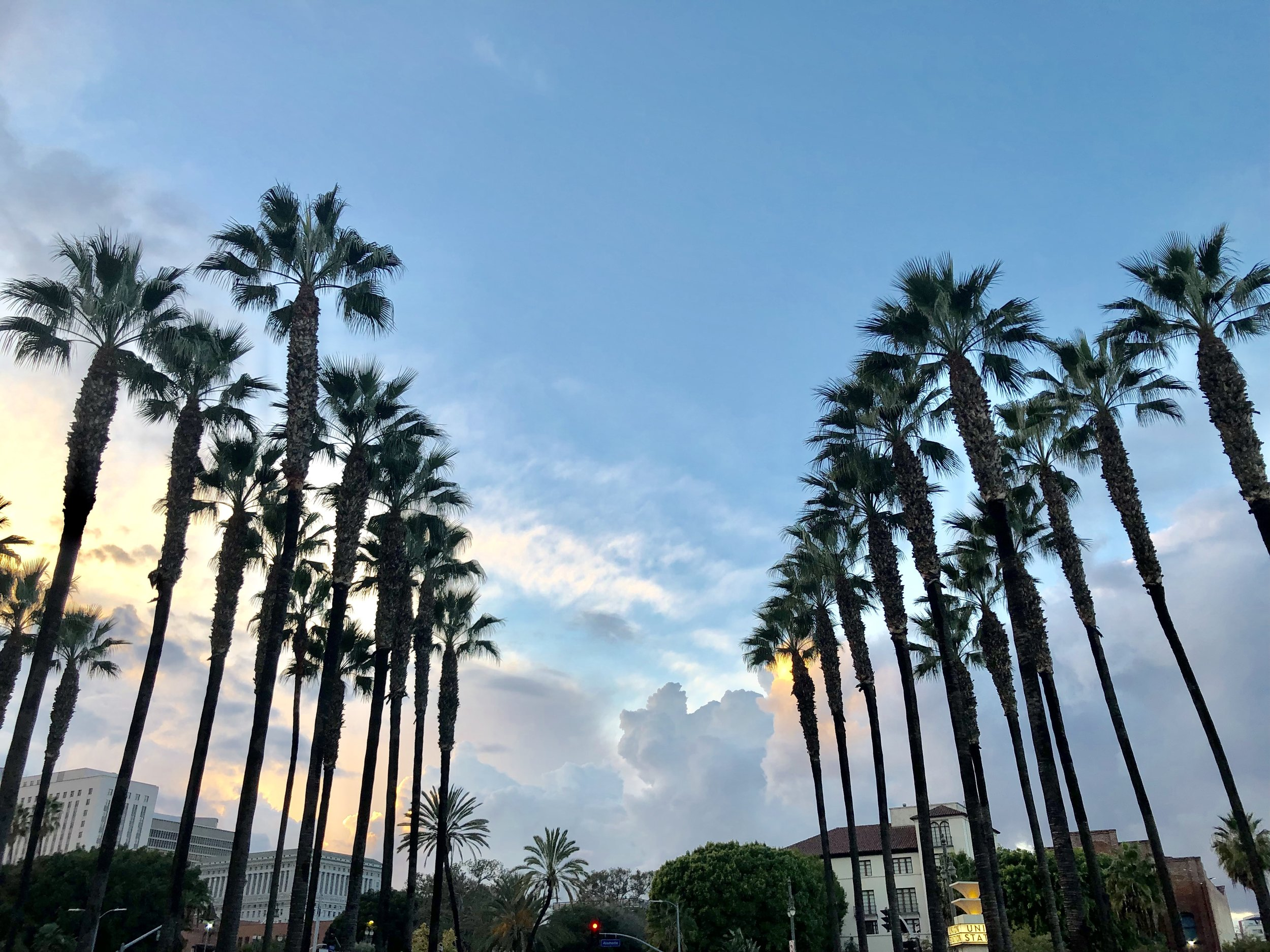 The palm trees and sunset by Union Station in Los Angeles are just a fraction of the reason this location is perfect for a Los Angeles personal branding shoot.
