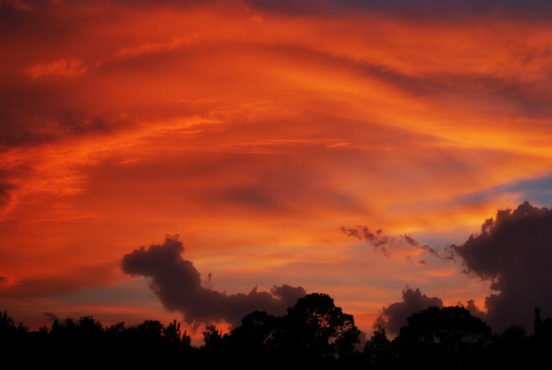 the-sky-Lisa.Runnels.jpg
