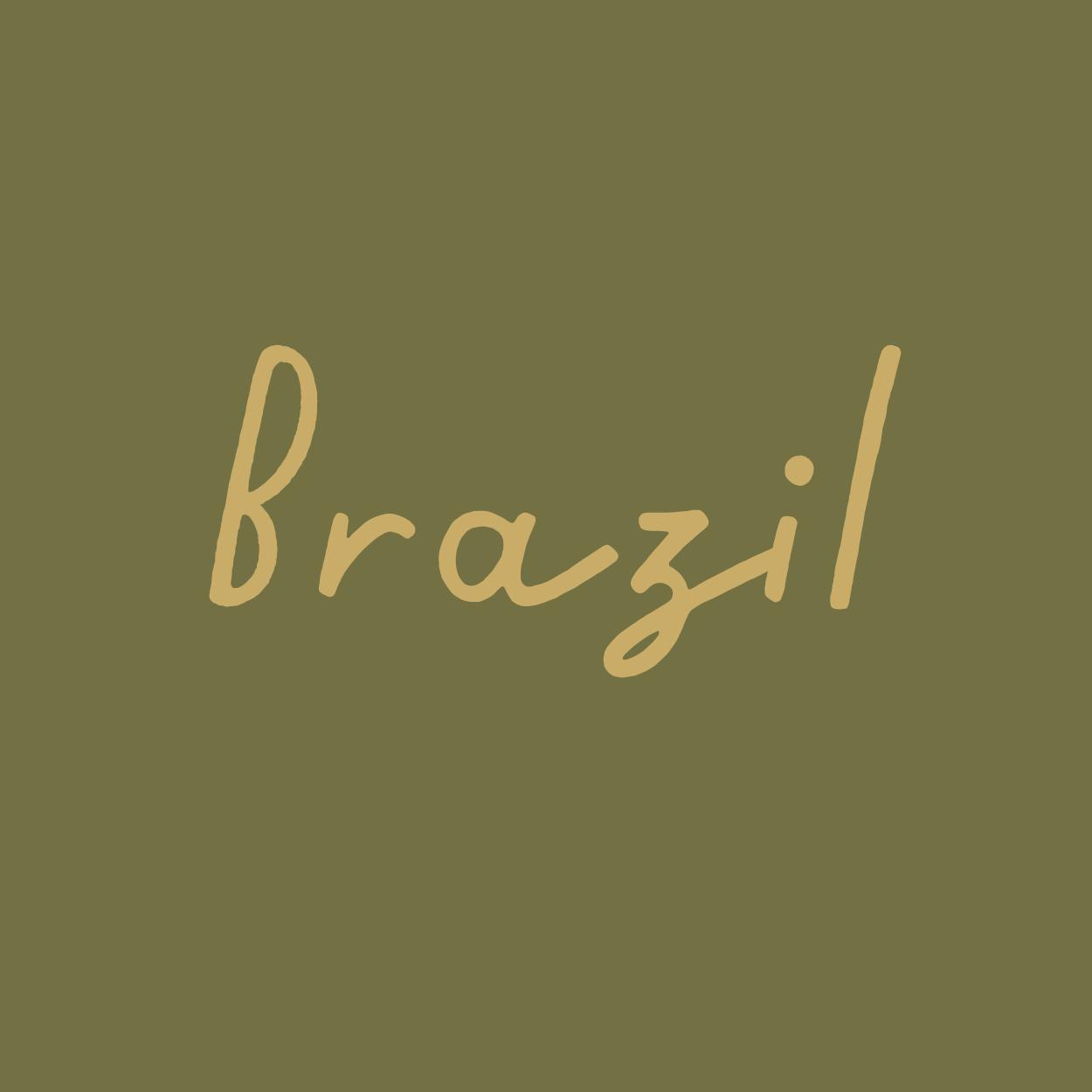 brazil-01.png