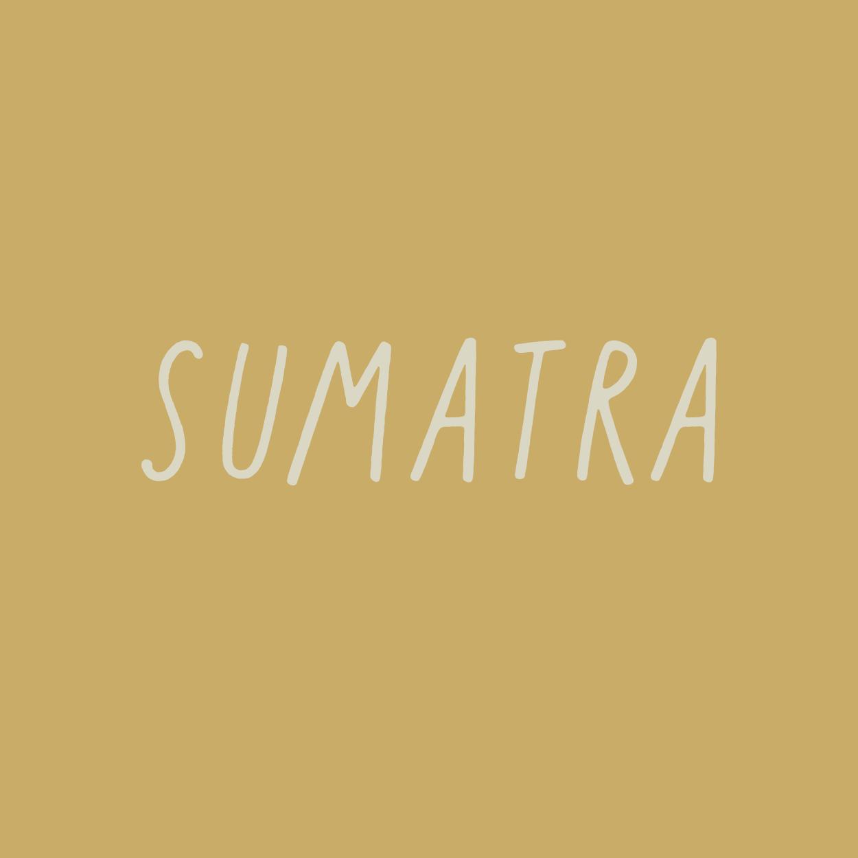 sumatra_office.png