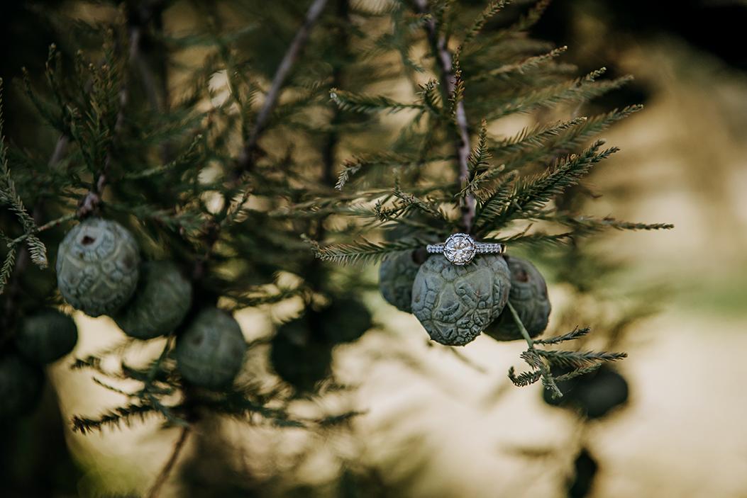 CBroussardPhoto-12.jpg