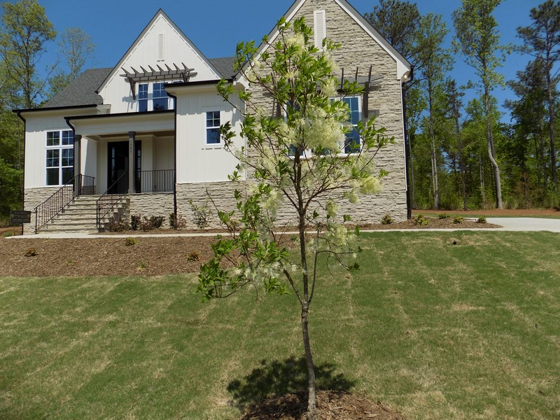 Green-Home-Features-Native-Trees.jpg