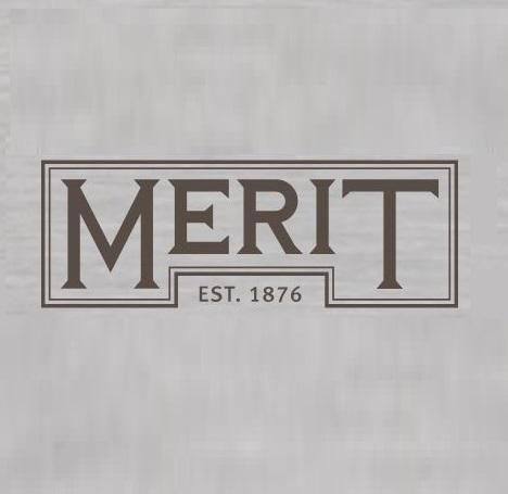 Merit logo 1.JPG