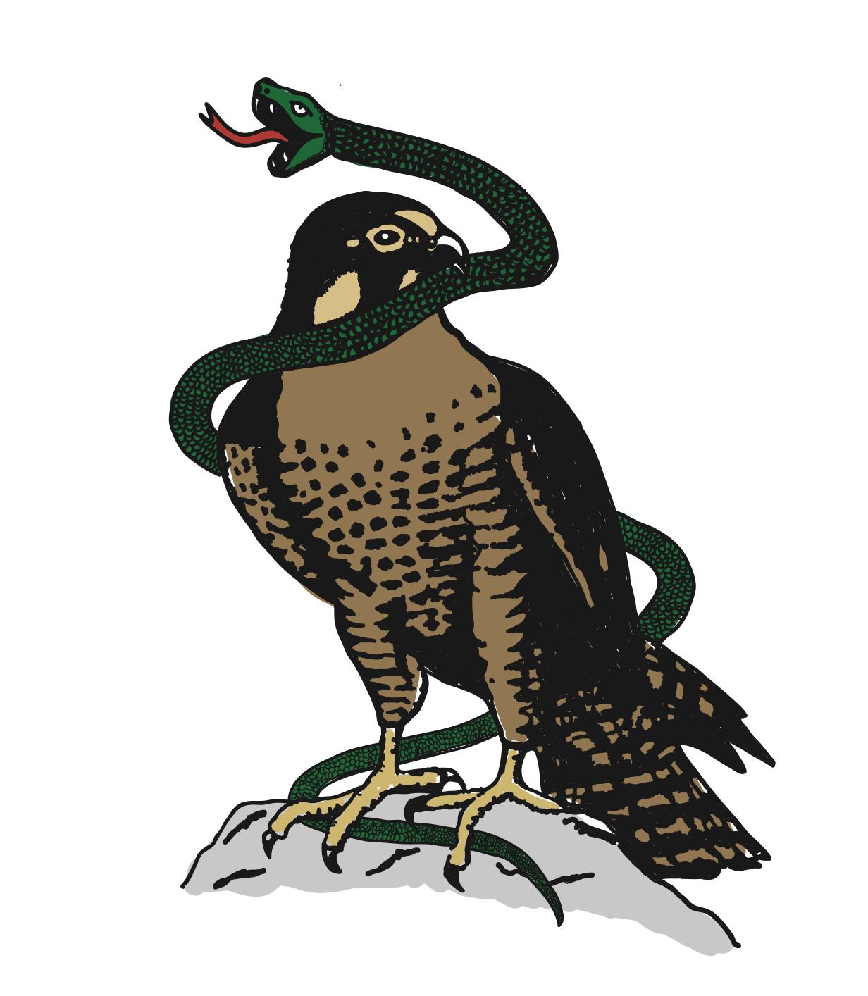 Custom NZ falcon illustration