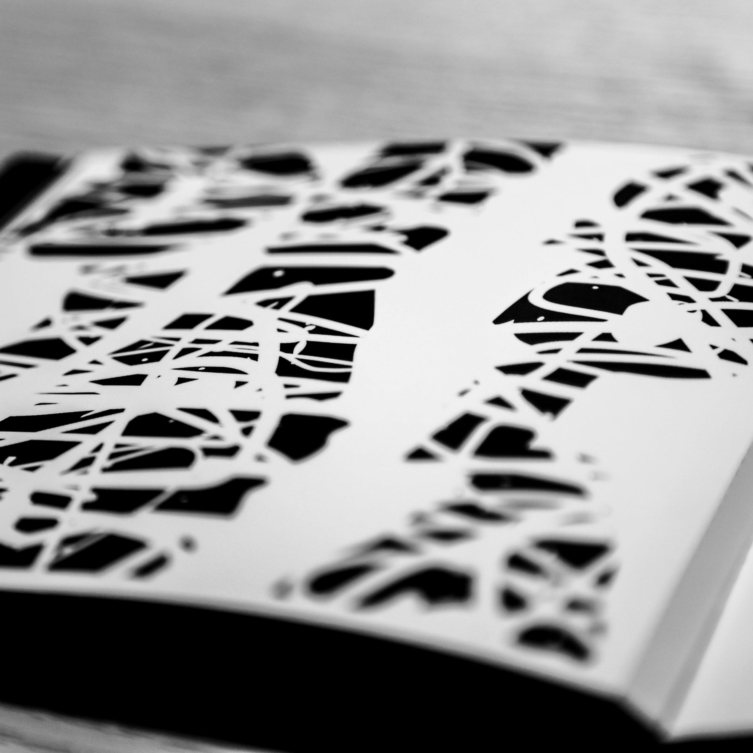 Monocaina Book 10.jpg
