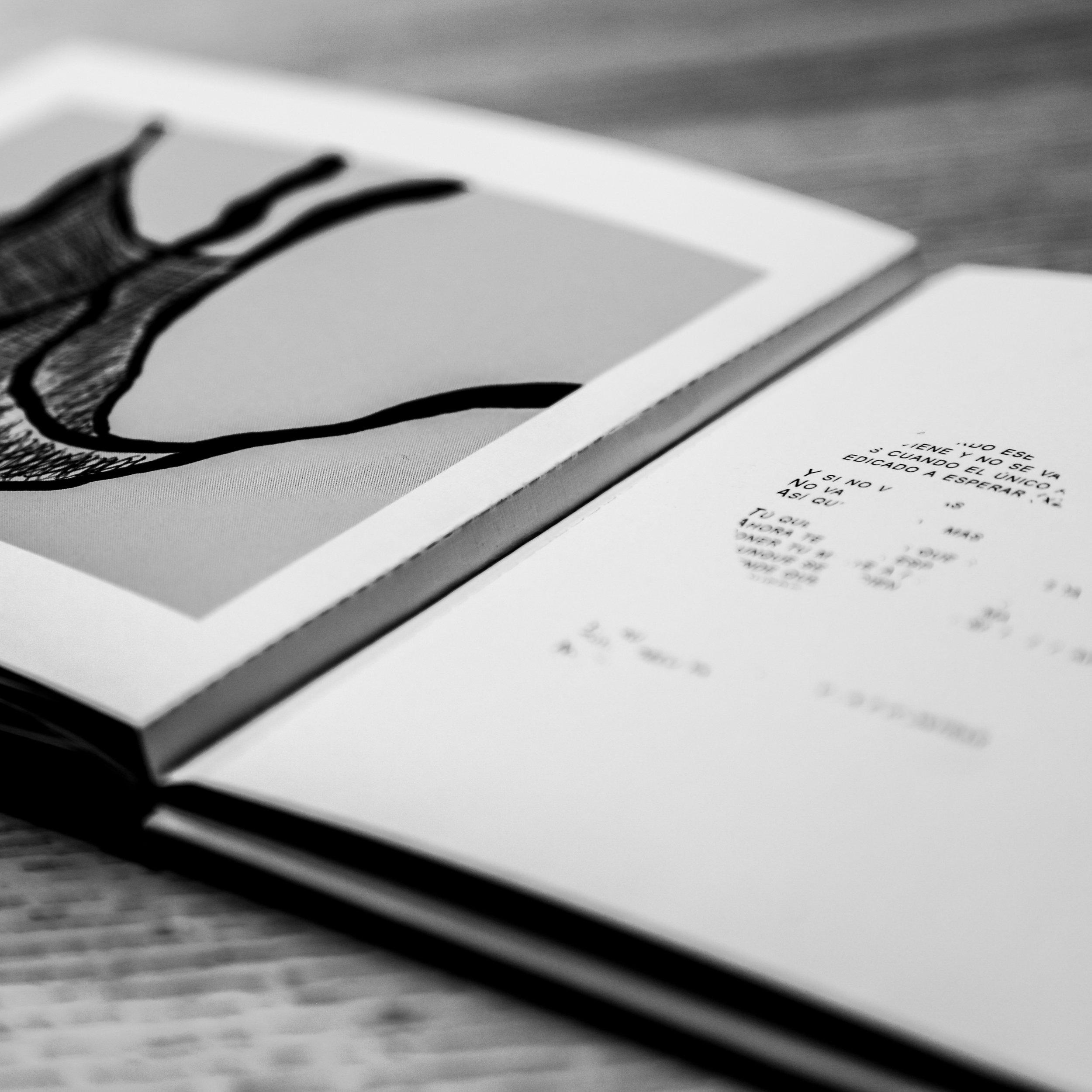 Monocaina Book 24.jpg