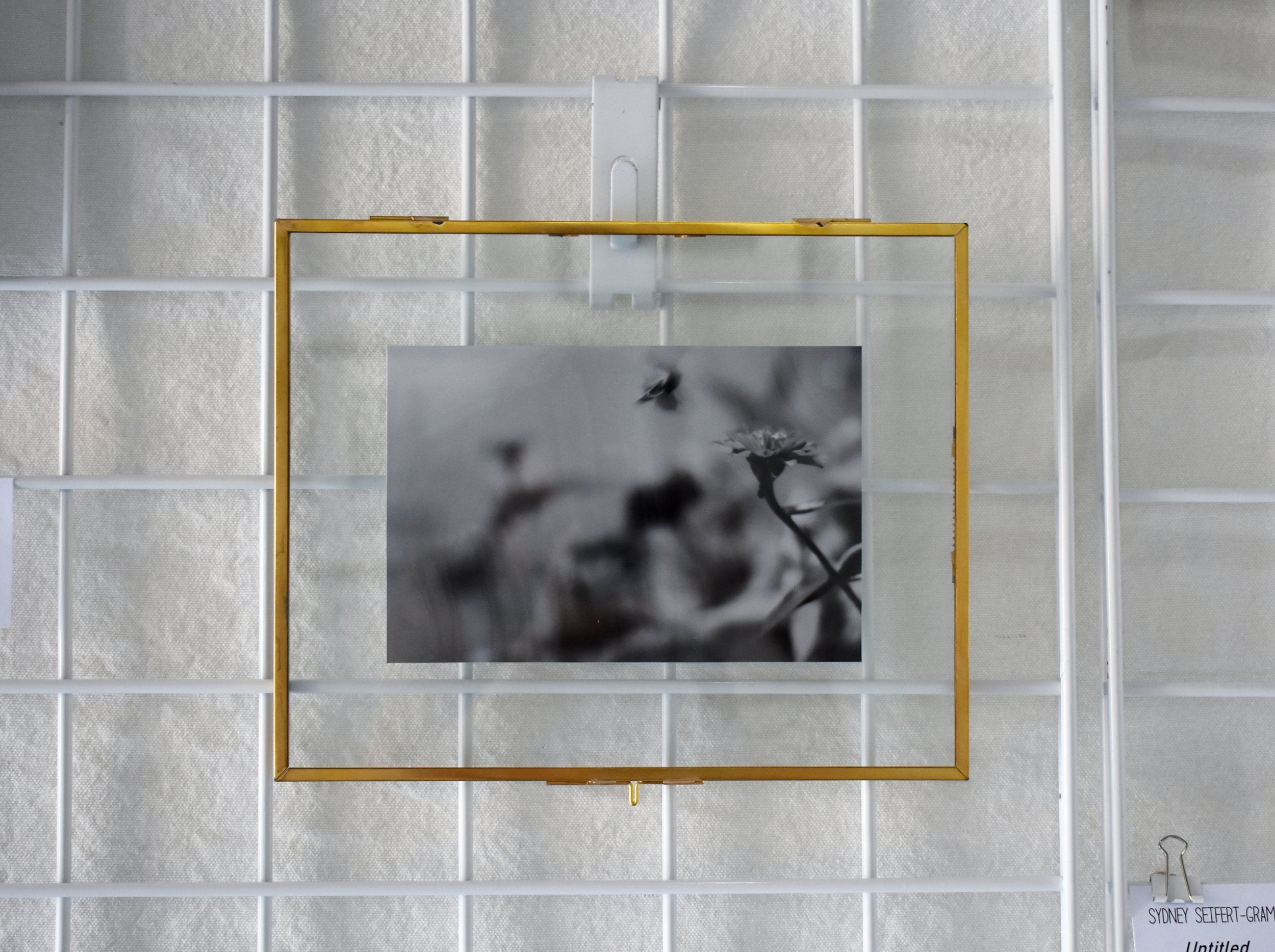 "sydney seifert-gram - UntitledSilver Halide Print8.25""10.25"" (with frame) $90Instagram"