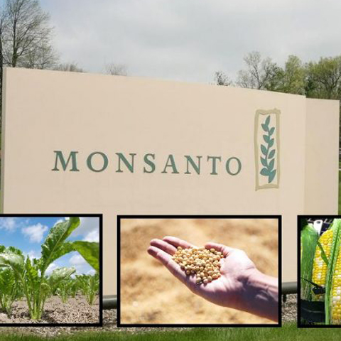 Monsanto-HQ-Glassdoor-768x468.jpg