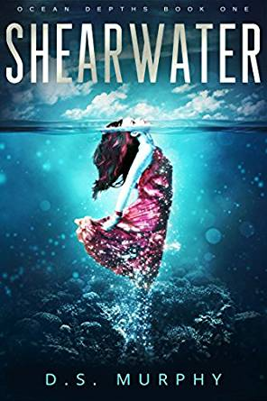 shearwater.jpg