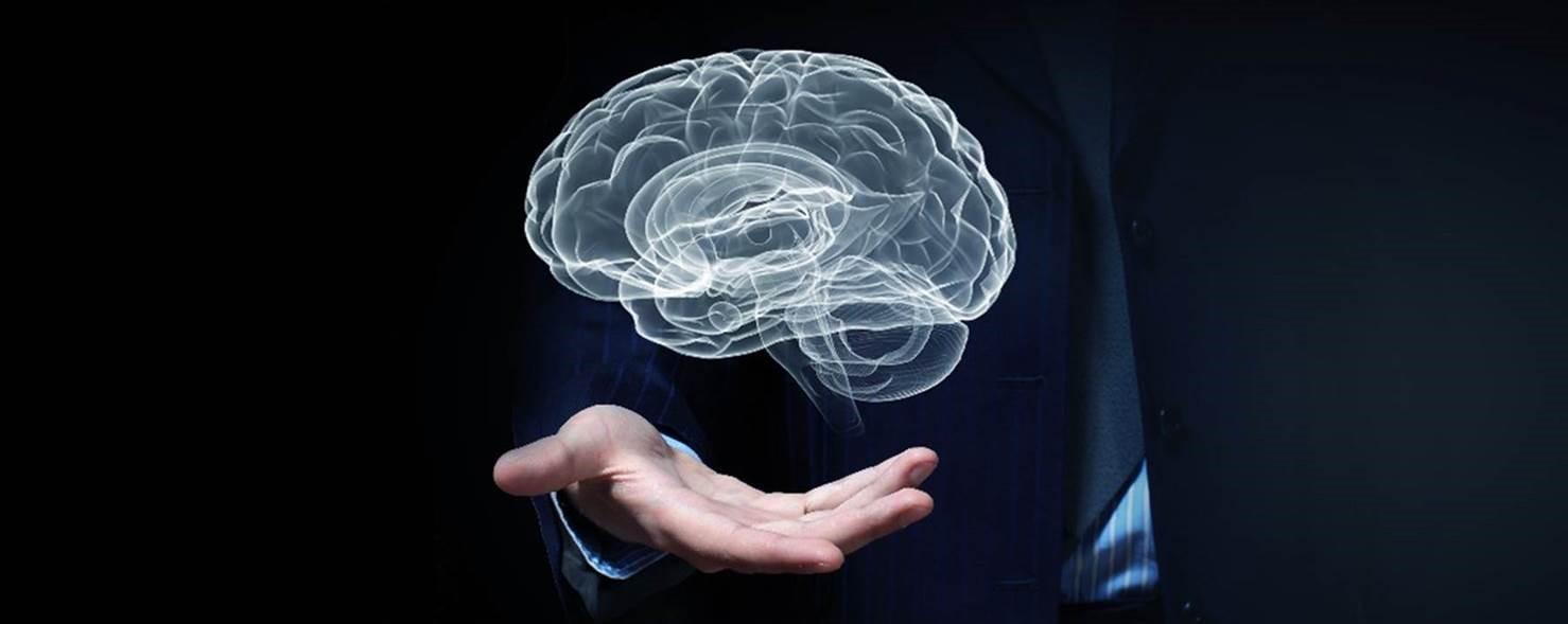 newletter_brain.jpg