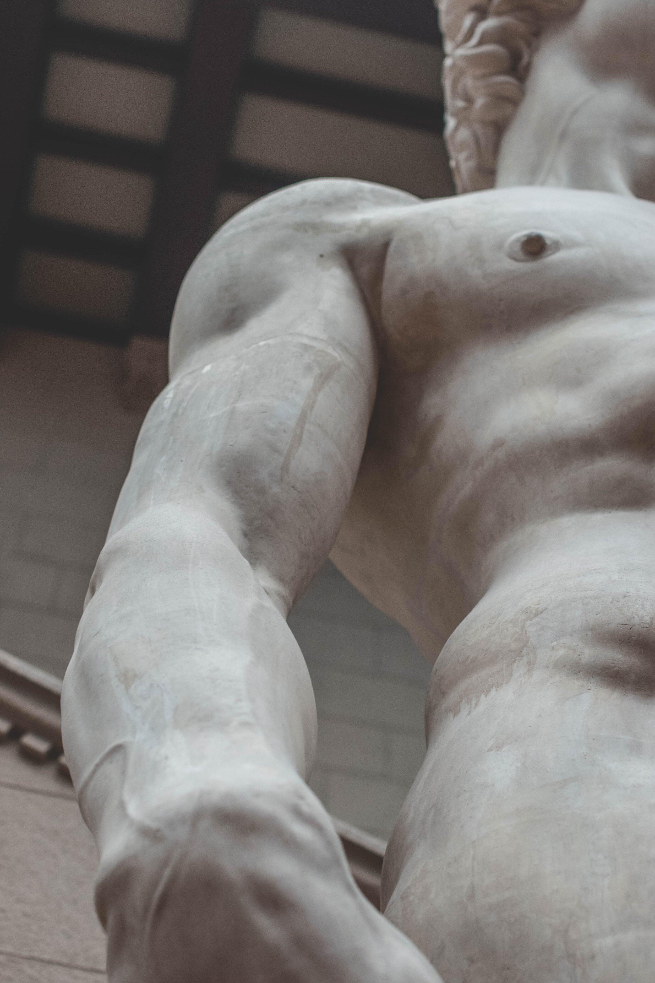 Michelangelo's David pic.jpg