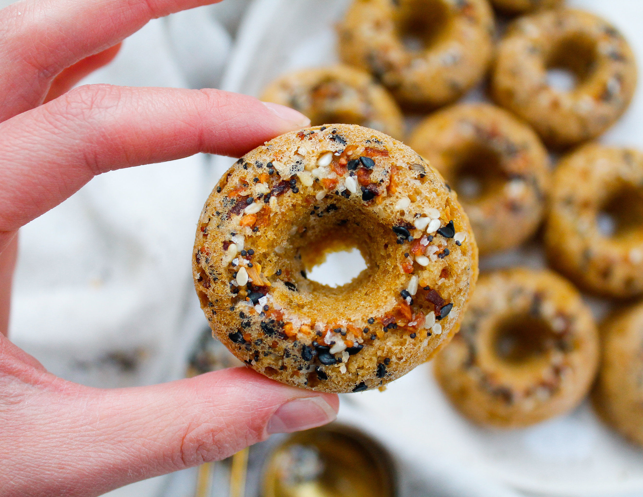 Mini Paleo Everything Bagels || These mini paleo bagels are perfect for your grain free bagel cravings! They're gluten free, dairy free, refined sugar free AND Specific Carbohydrate Diet friendly. Click through for the full recipe! || #paleobaking #paleobagels #specificcarbohydratediet #scddiet #everythingbagels || plentyandwell.com