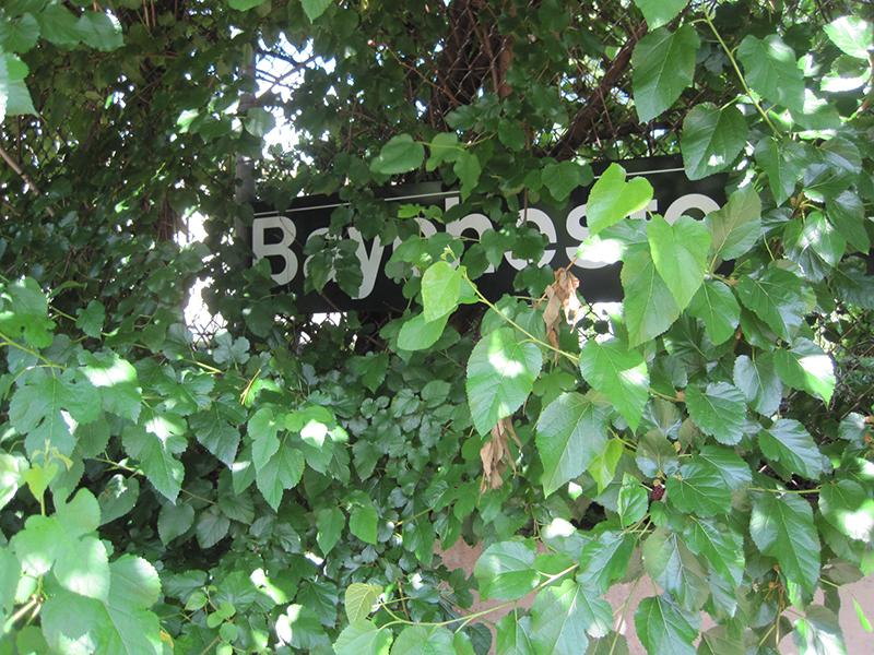 baychester-platform_4794932249_o.jpg