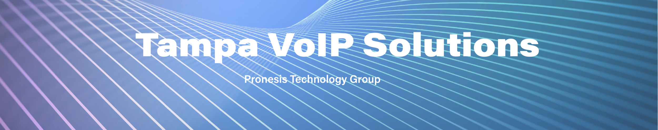 VOIP Web Banner.png