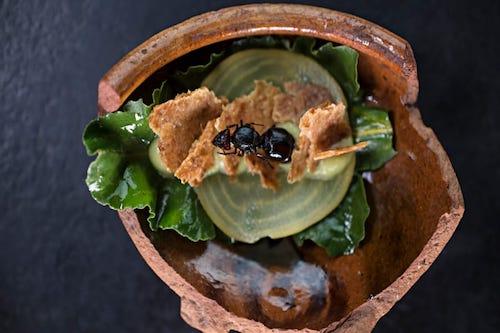 bolivia food revolution a2d travel inspiration.jpg