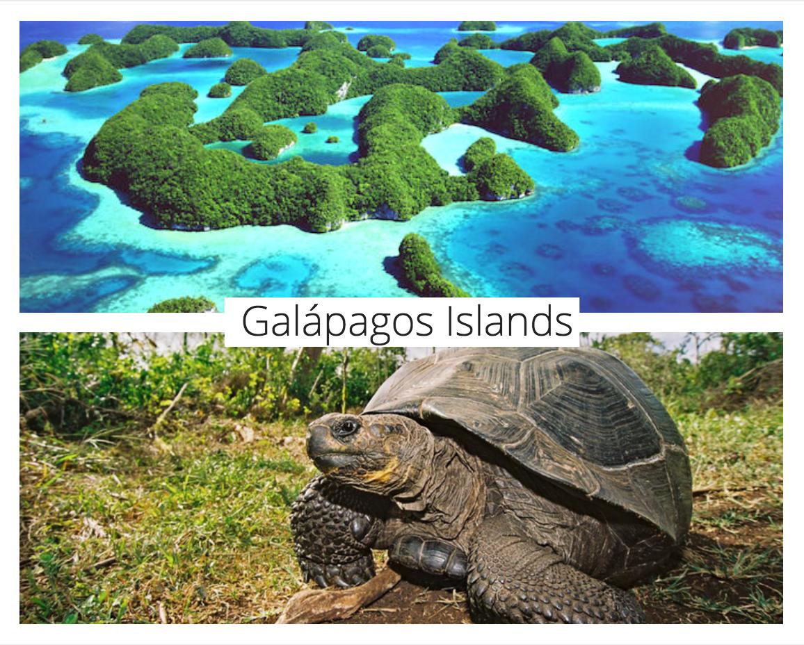 galapagos-islands-travel-inspiration-a2d.jpg