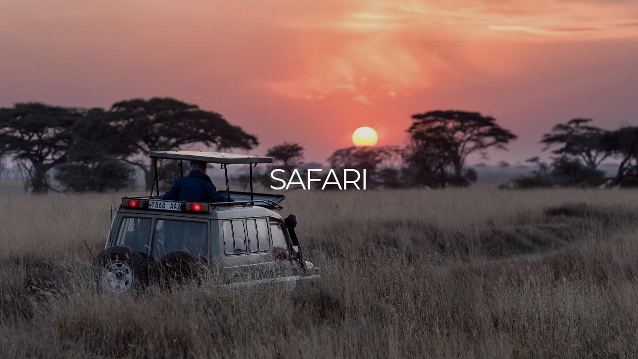 Safari-adventure-holiday-luxury-boutique-travel-a2d