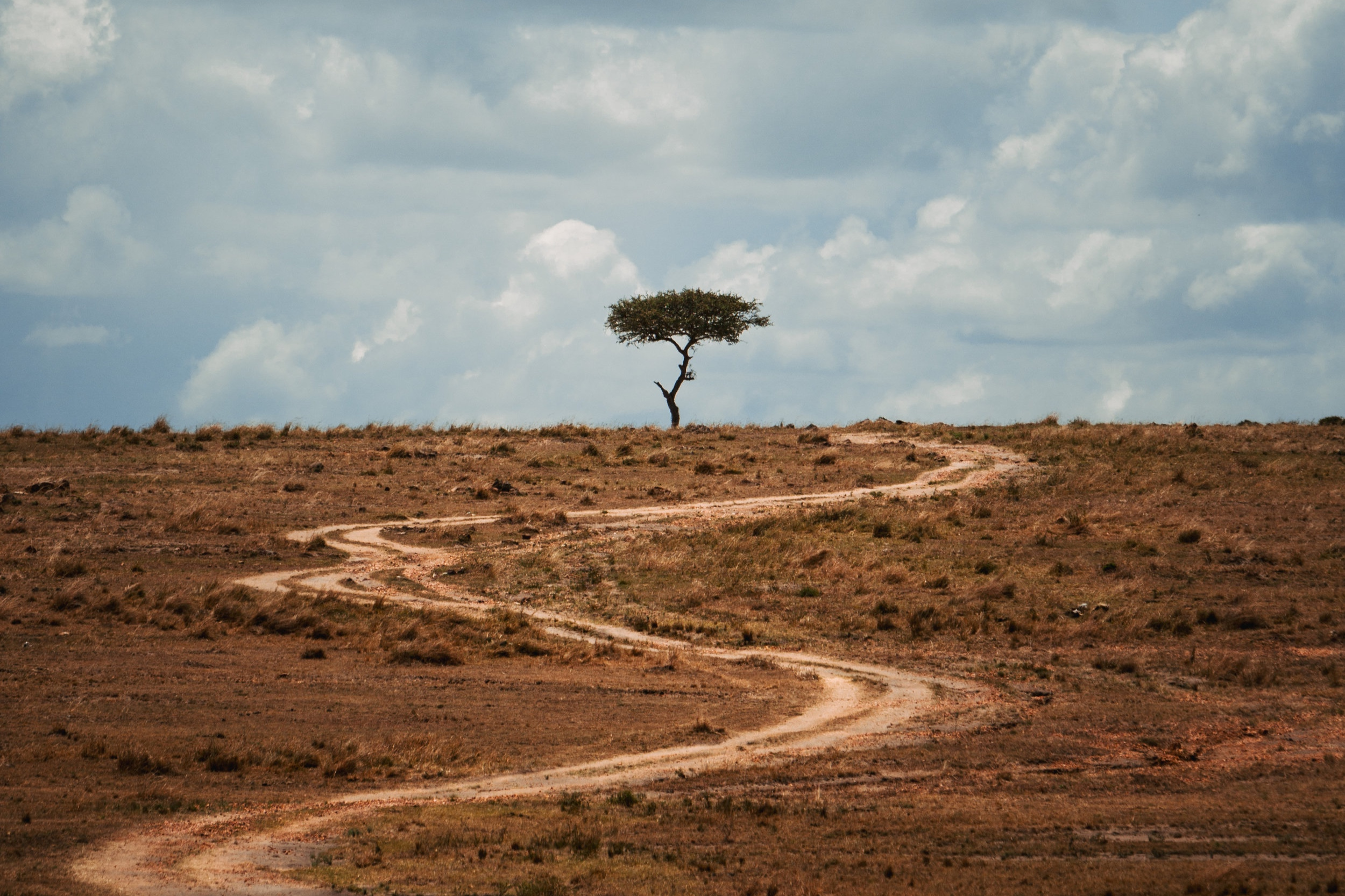 #TheWalkKenya - Walking across an entire country won't be easy. Help us get there.