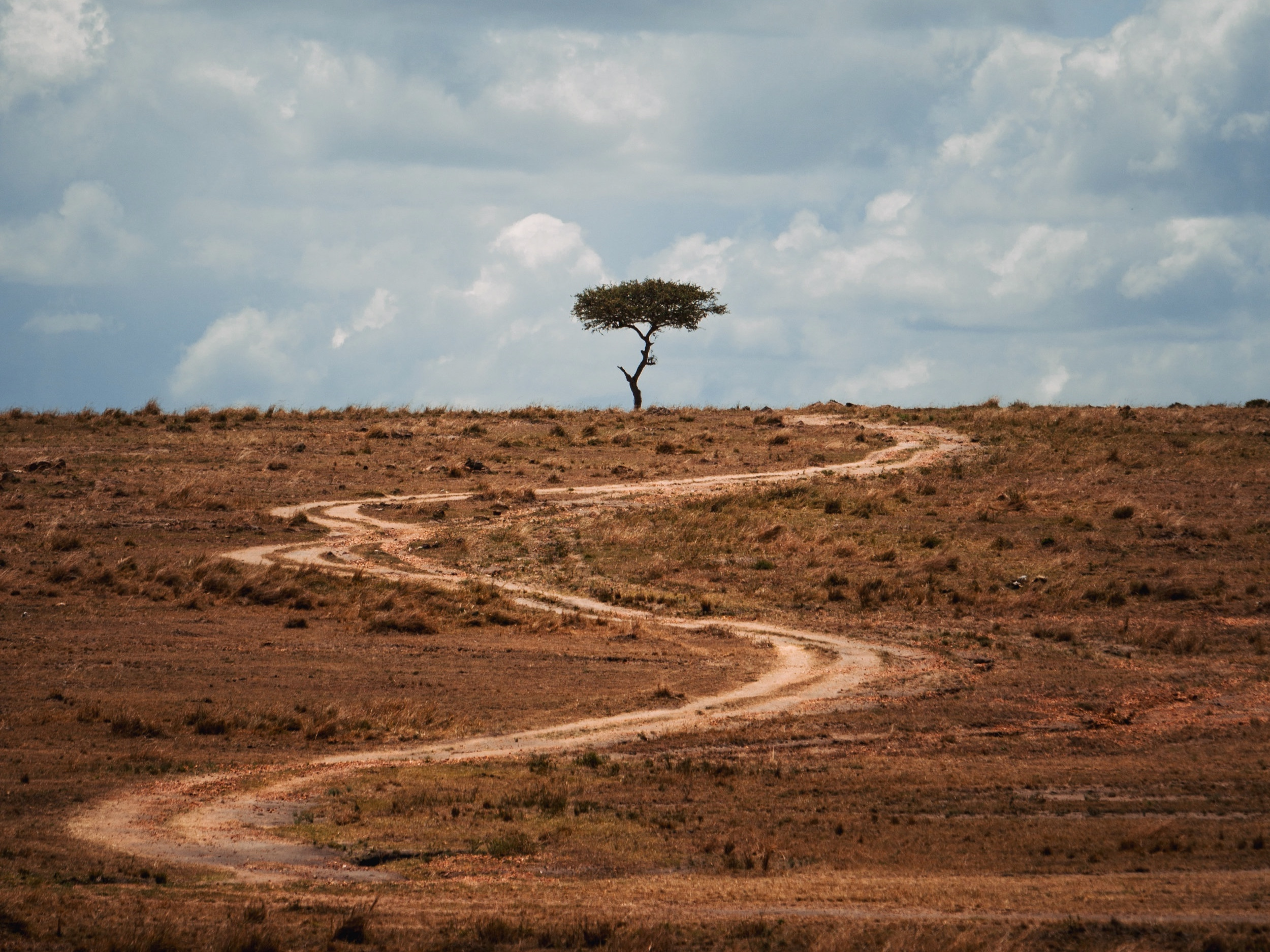 We are walking across East Africa to support Arrive. - Learn about our trek, see photo updates, and follow along by visiting The Walk Africa website.