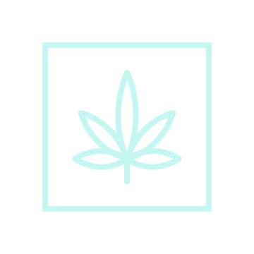 Licensed Producers - Track your growing inventory, and better connect with customers.