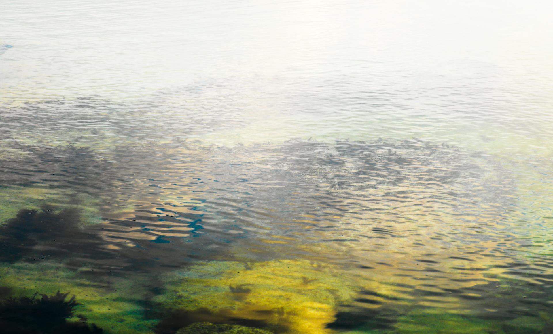 Presence : vp, 076   pigment print, diasec  100 x 165cm, 2010
