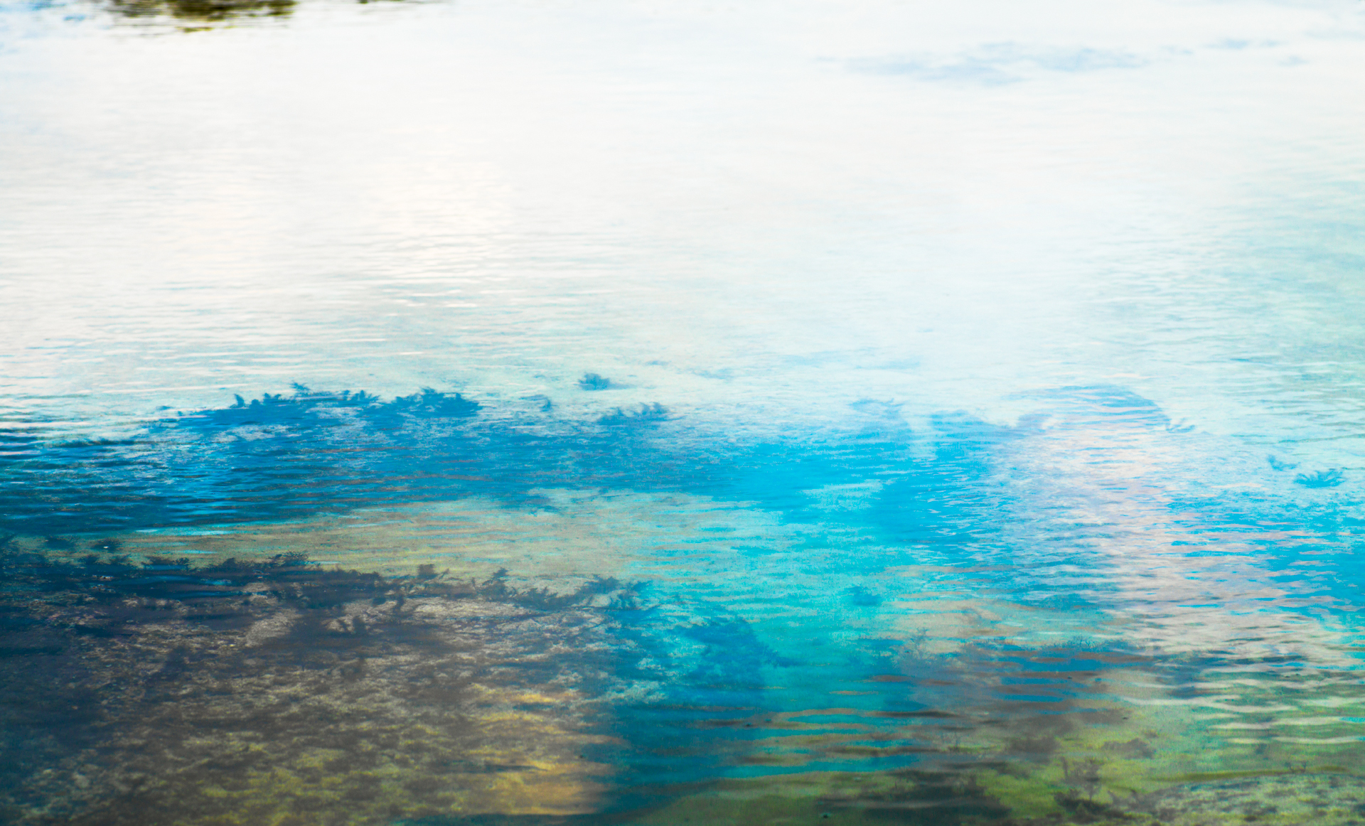 Presence : vp, 090   pigment print, diasec  100 x 165cm, 2010