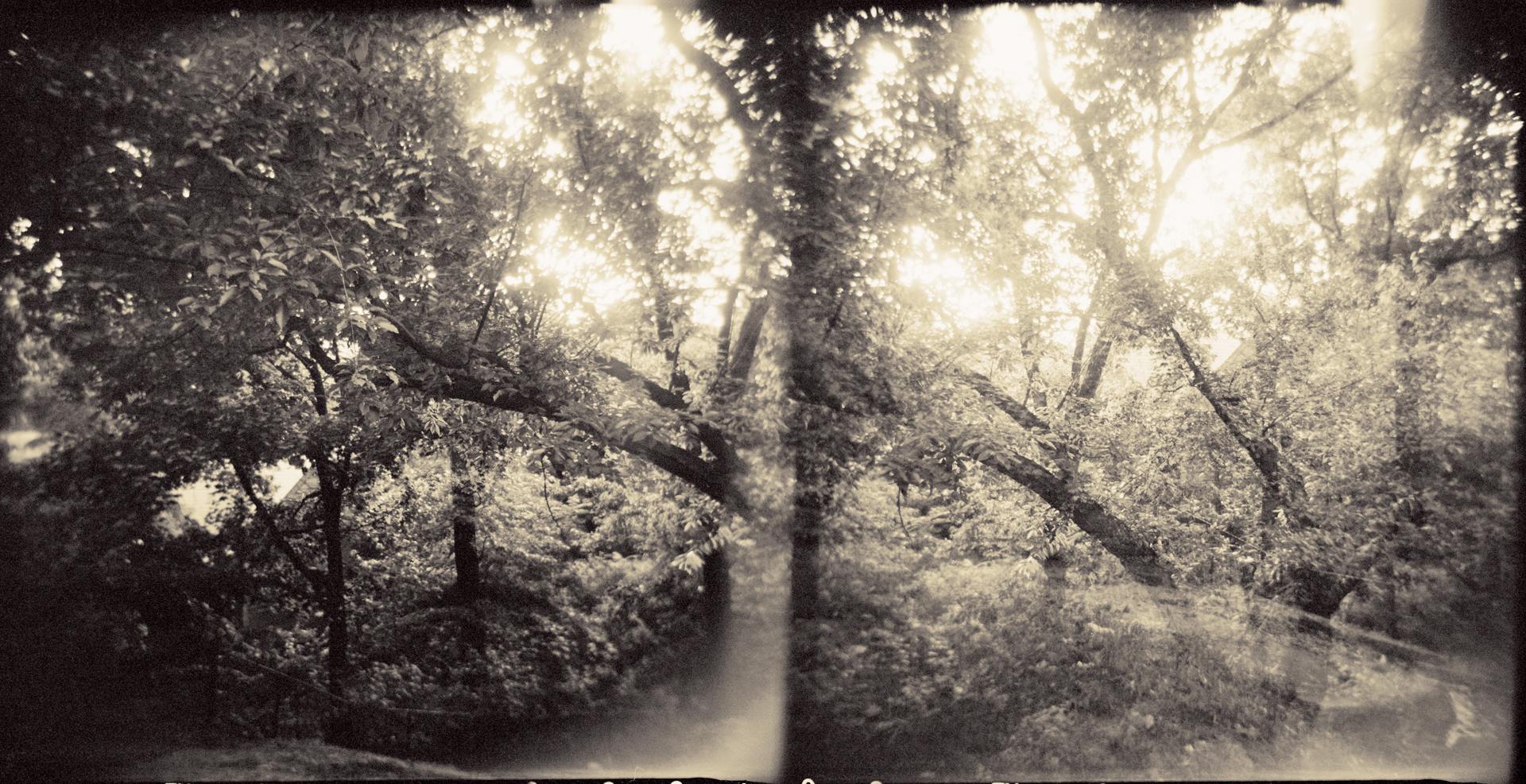 Landscape of Memory : lom 050   bleached silver print, framed  23 x 12cm, 1998
