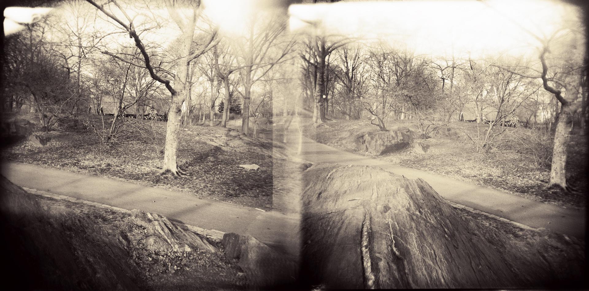 Landscape of Memory : lom 048   bleached silver print, framed  24 x 12cm, 1999