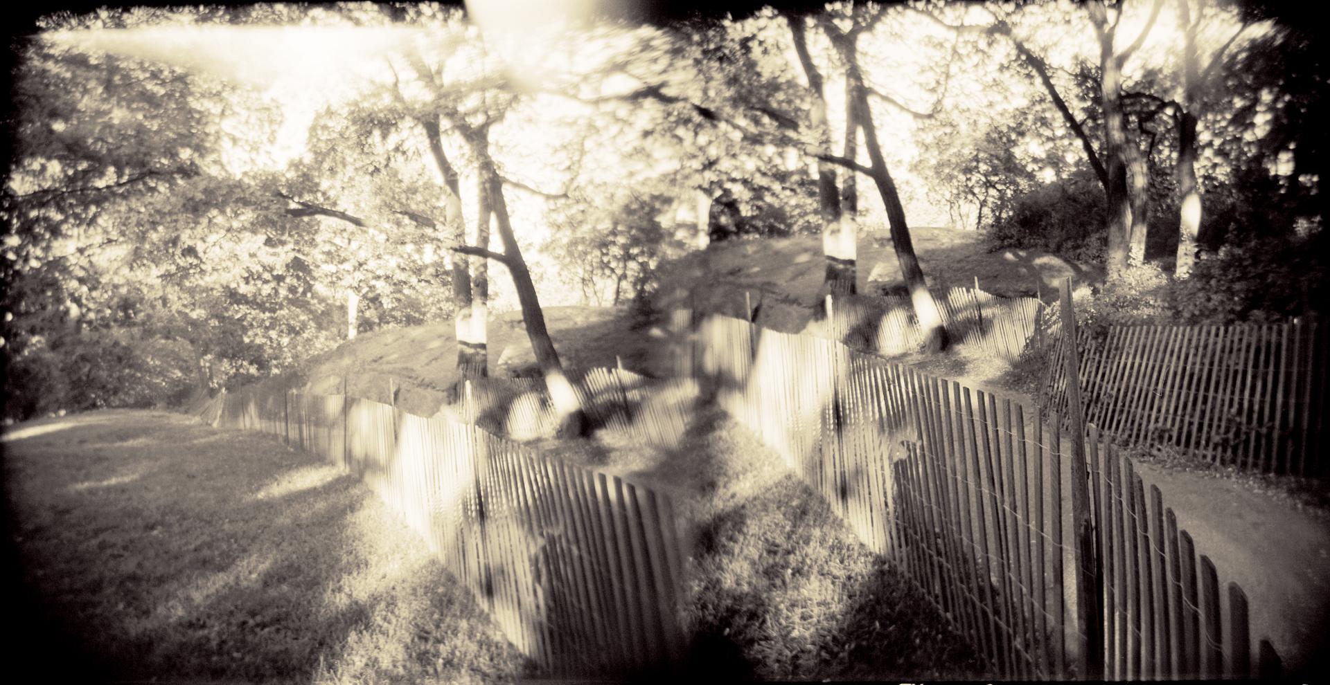 Landscape of Memory : lom 058   bleached silver print, framed  234 x 12cm, 1998