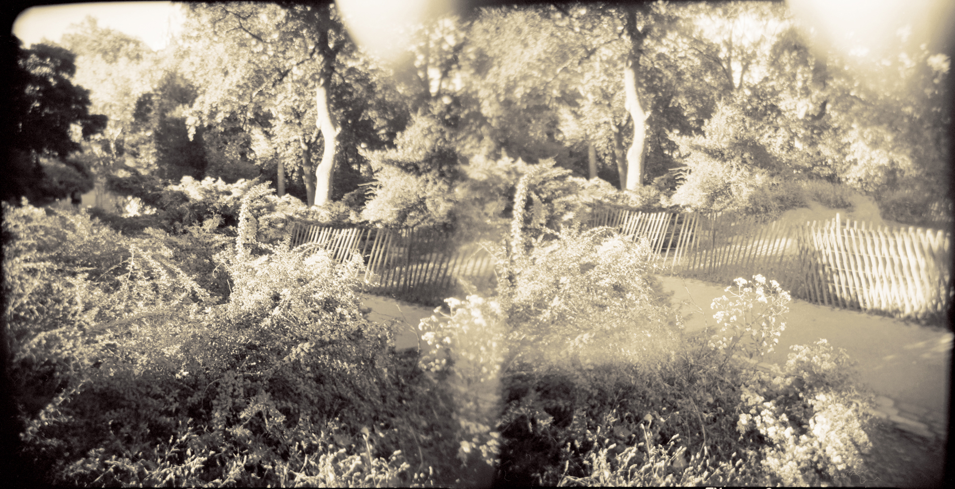 Landscape of Memory : lom 060   bleached silver print, framed  23 x 12cm, 1997