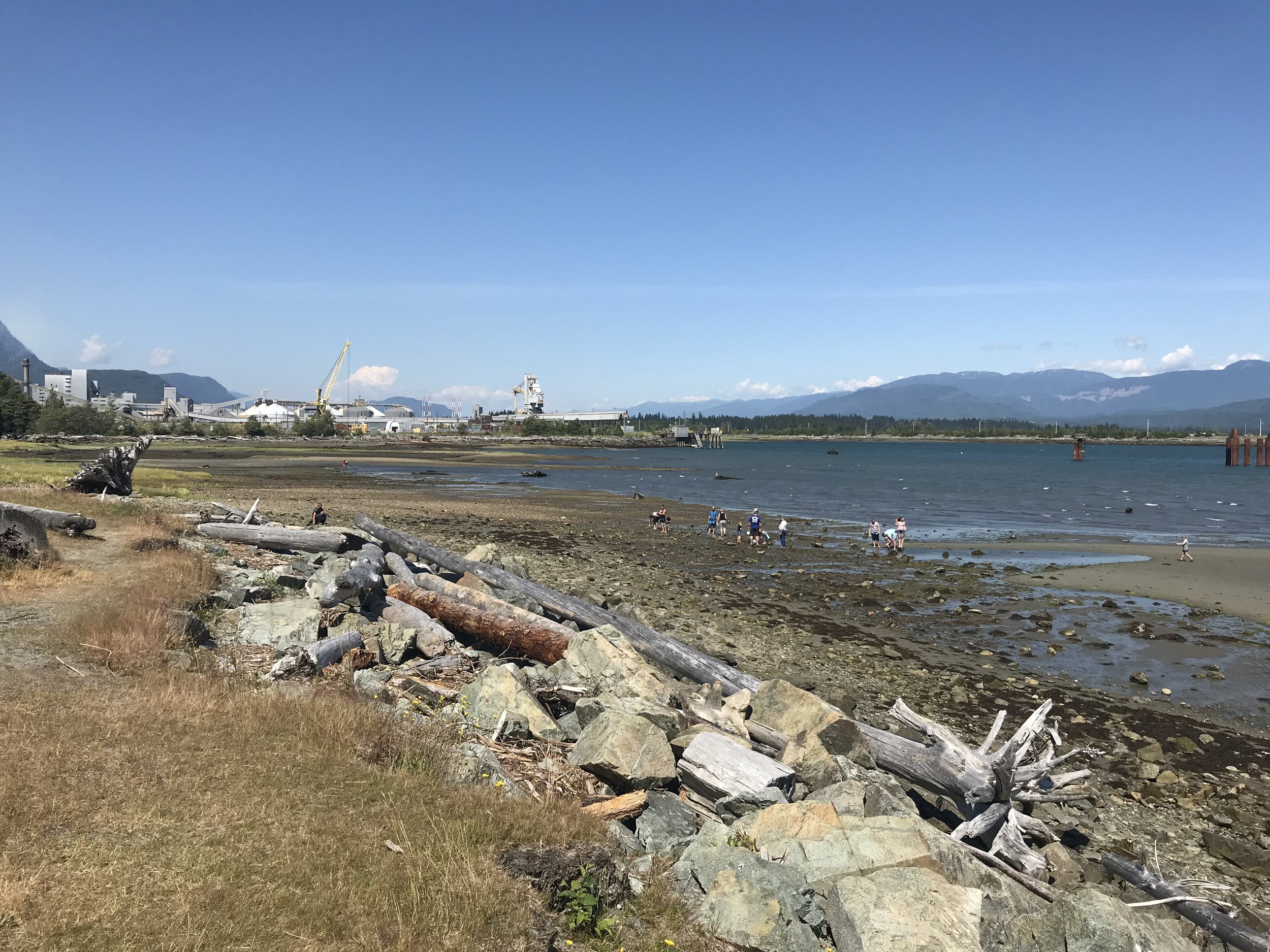 Hospital Beach in Kitimat, BC. Left: Rio Tinto Alcan aluminum smelter. Future site of LNG Canada export facility behind smelter. Photo credit: Dr. Marieka Sax