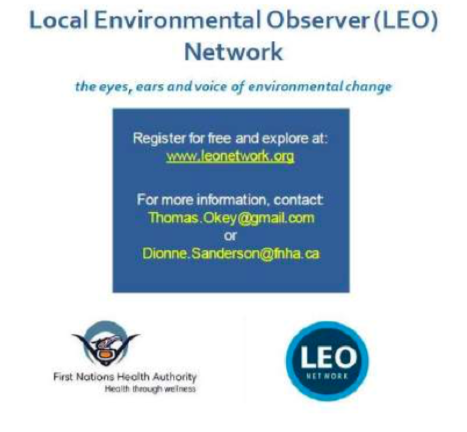 The LEO Network BC hub has monthly webinars with guest presenters.