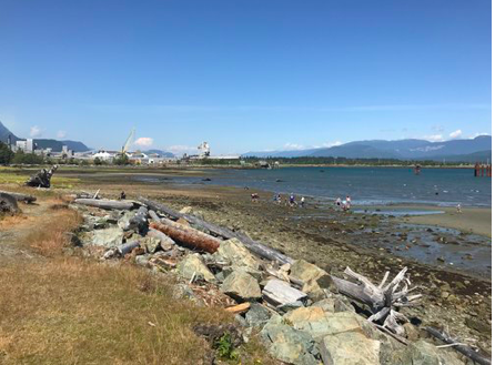 Hospital Beach in Kitimat, BC. Left: Rio Tinto Al- can aluminum smelter. Future site of LNG Canada export facility behind smelter. Photo credit: Dr. Marieka Sax.
