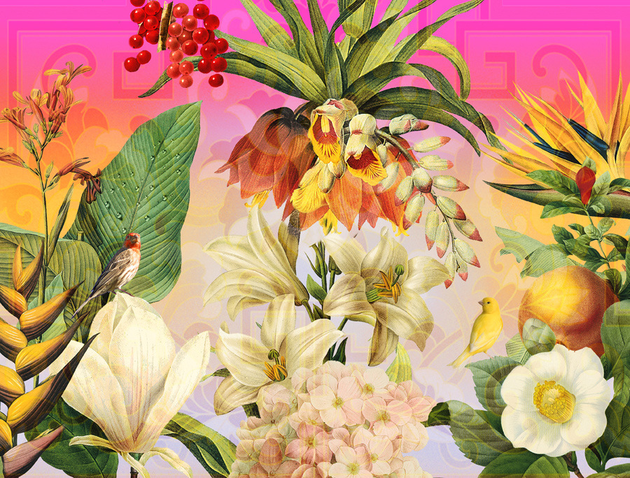 tropicalgarden72.jpg