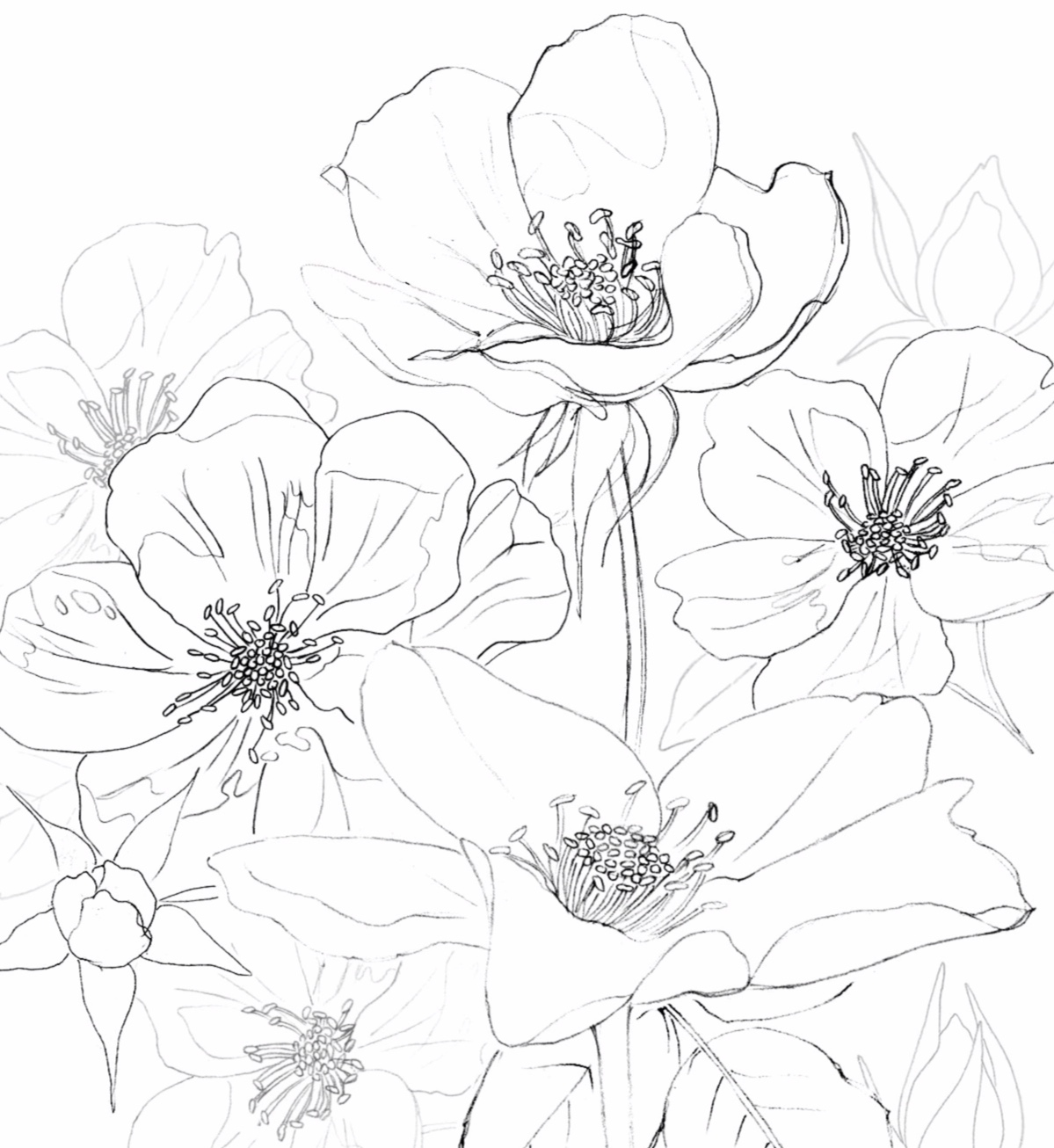 Motif sketches for Ink Flower Collection  © 2019 Cory Deibert