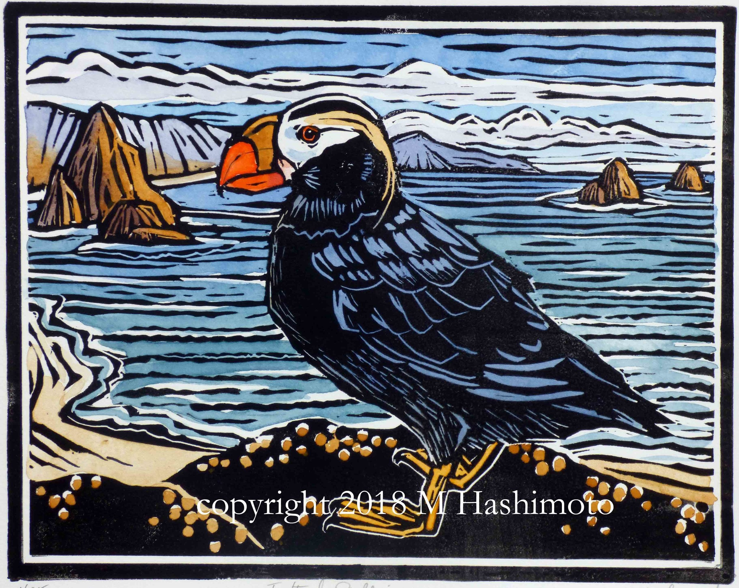 Tufted+Puffin+2+for+web+copyright.jpg