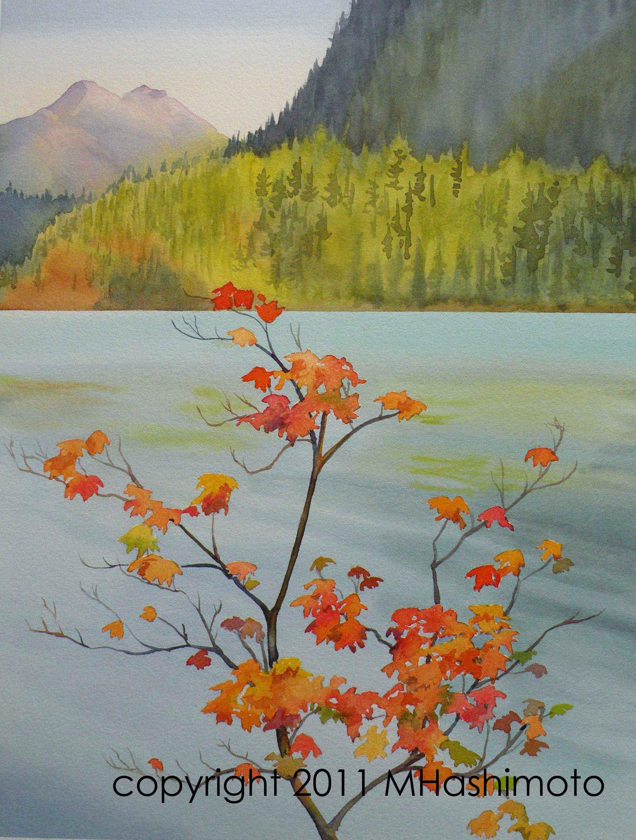 Vine Maple, Diablo Lake - Giclee Print $75