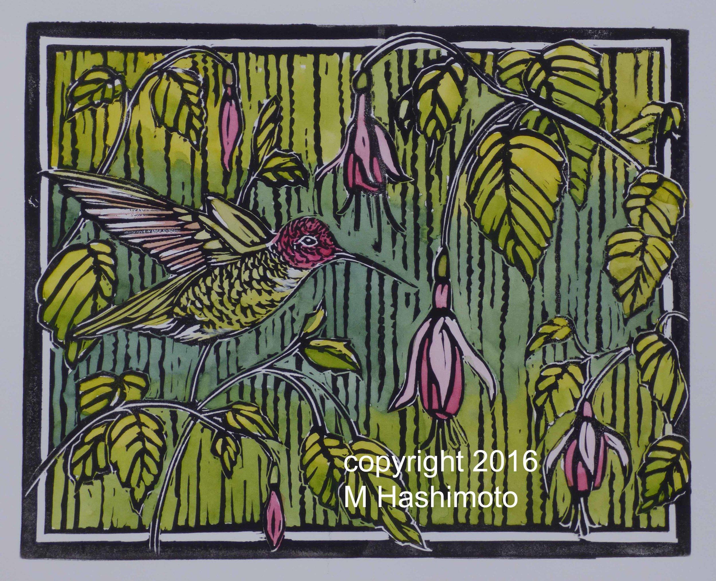 Anna's Hummingbird & Fuchsias