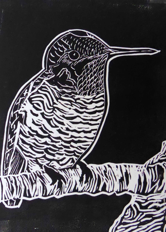 Hummingbird print.jpg