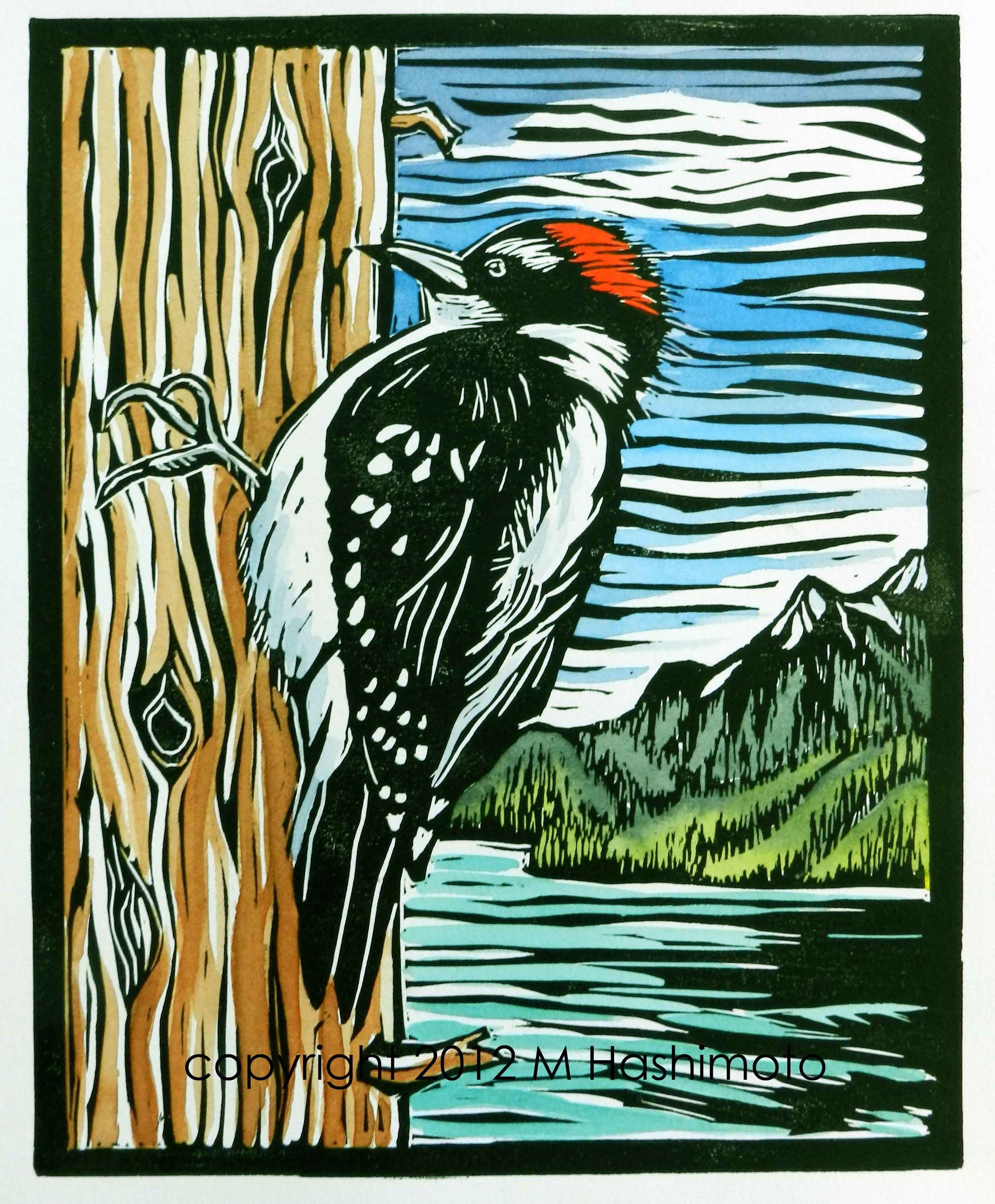 Woodpecker, North Cascades for web.jpg
